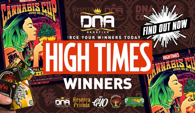 Hightimes Norcal Cannabis Cup winners