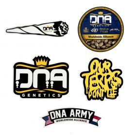 DNA Genetics Slap Pack