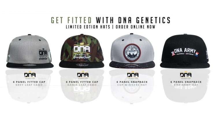 DNA Genetics New Collection Hats